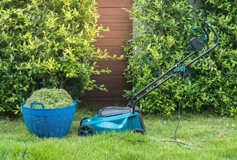 Purchasing an Electric Lawn Mower: The Choice of the Future